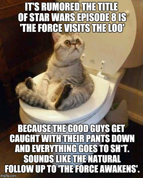 This might be a huge leak | IT'S RUMORED THE TITLE OF STAR WARS EPISODE 8 IS 'THE FORCE VISITS THE LOO' BECAUSE THE GOOD GUYS GET CAUGHT WITH THEIR PANTS DOWN AND EVERY | image tagged in toilet cat,the force visits the loo,good guys get caught with their pants down,everything goes to shit,funny | made w/ Imgflip meme maker