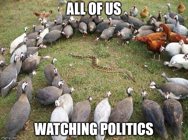 Us watching politics | ALL OF US WATCHING POLITICS | image tagged in politics,washington dc,funny,AdviceAnimals | made w/ Imgflip meme maker