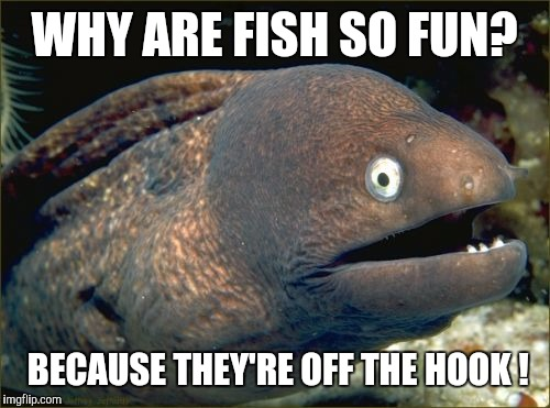 Bad joke eel meme imgflip for Why fish is bad for you