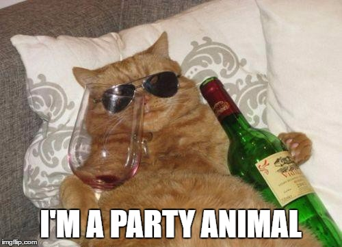 I'M A PARTY ANIMAL | made w/ Imgflip meme maker