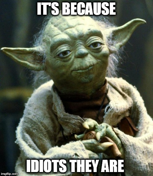 Star Wars Yoda Meme | IT'S BECAUSE IDIOTS THEY ARE | image tagged in memes,star wars yoda | made w/ Imgflip meme maker