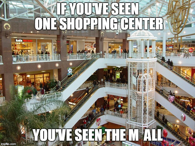 IF YOU'VE SEEN ONE SHOPPING CENTER YOU'VE SEEN THE M  ALL | image tagged in funny memes,puns,mall,experiment,bad pun,shopping center | made w/ Imgflip meme maker