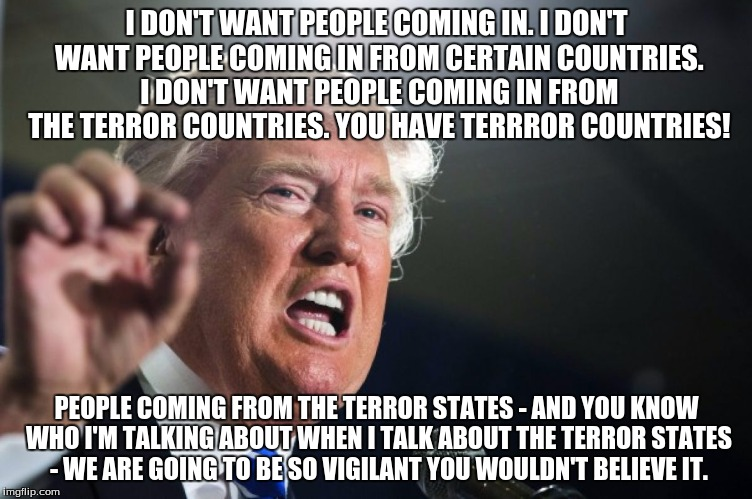 donald trump | I DON'T WANT PEOPLE COMING IN. I DON'T WANT PEOPLE COMING IN FROM CERTAIN COUNTRIES. I DON'T WANT PEOPLE COMING IN FROM THE TERROR COUNTRIES | image tagged in donald trump | made w/ Imgflip meme maker