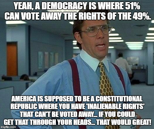 That Would Be Great Meme | YEAH, A DEMOCRACY IS WHERE 51% CAN VOTE AWAY THE RIGHTS OF THE 49%. AMERICA IS SUPPOSED TO BE A CONSTITUTIONAL REPUBLIC WHERE YOU HAVE 'INAL | image tagged in memes,that would be great | made w/ Imgflip meme maker