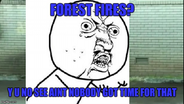 FOREST FIRES? Y U NO SEE AINT NOBODY GOT TIME FOR THAT | made w/ Imgflip meme maker