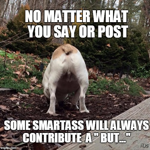 "THE INEVITABLE SMARTASS | NO MATTER WHAT YOU SAY OR POST SOME SMARTASS WILL ALWAYS CONTRIBUTE  A "" BUT..."" 
