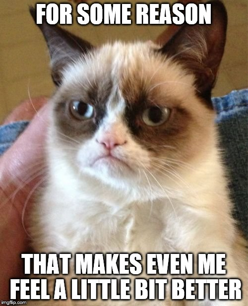 Grumpy Cat Meme | FOR SOME REASON THAT MAKES EVEN ME FEEL A LITTLE BIT BETTER | image tagged in memes,grumpy cat | made w/ Imgflip meme maker