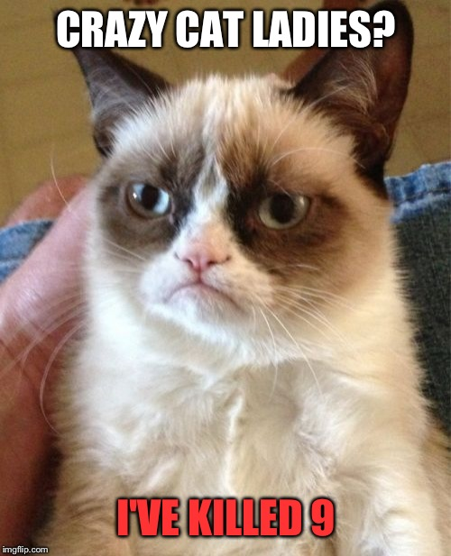 Grumpy Cat Meme | CRAZY CAT LADIES? I'VE KILLED 9 | image tagged in memes,grumpy cat | made w/ Imgflip meme maker