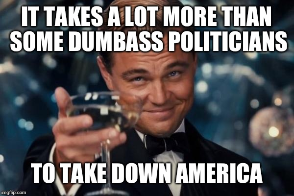Leonardo Dicaprio Cheers Meme | IT TAKES A LOT MORE THAN SOME DUMBASS POLITICIANS TO TAKE DOWN AMERICA | image tagged in memes,leonardo dicaprio cheers | made w/ Imgflip meme maker