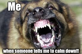 Angry Dog | Me when someone tells me to calm down!! | image tagged in angry dog | made w/ Imgflip meme maker