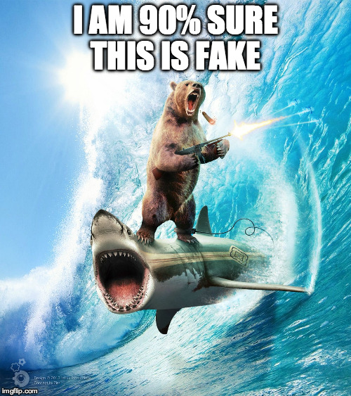 Bear Gone Wild | I AM 90% SURE THIS IS FAKE | image tagged in bear gone wild,photoshop,shark,fake | made w/ Imgflip meme maker