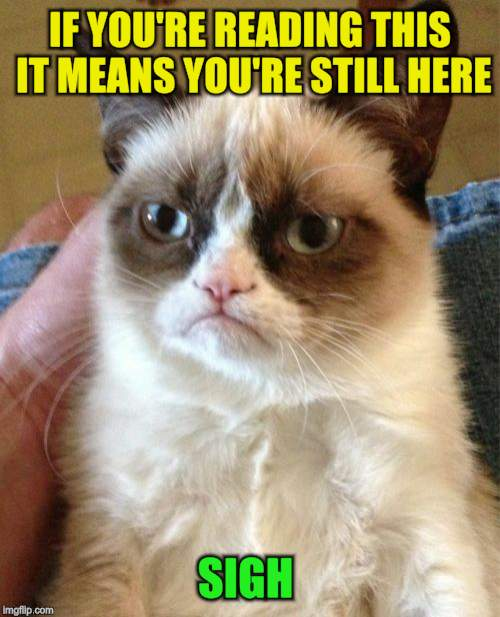 Grumpy Cat Meme | IF YOU'RE READING THIS IT MEANS YOU'RE STILL HERE SIGH | image tagged in memes,grumpy cat | made w/ Imgflip meme maker