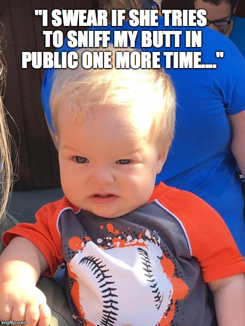 "Baby Face |  ""I SWEAR IF SHE TRIES TO SNIFF MY BUTT IN PUBLIC ONE MORE TIME...."" 