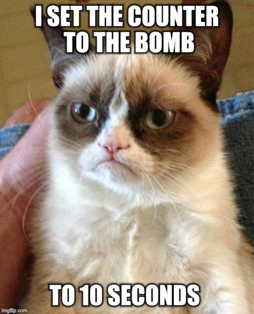 Grumpy Cat Meme | I SET THE COUNTER TO THE BOMB TO 10 SECONDS | image tagged in memes,grumpy cat | made w/ Imgflip meme maker