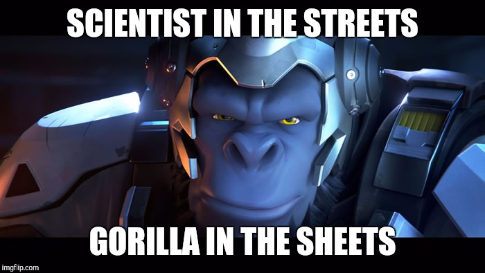 Gorilla in the sheets | SCIENTIST IN THE STREETS GORILLA IN THE SHEETS | image tagged in winston,overwatch | made w/ Imgflip meme maker