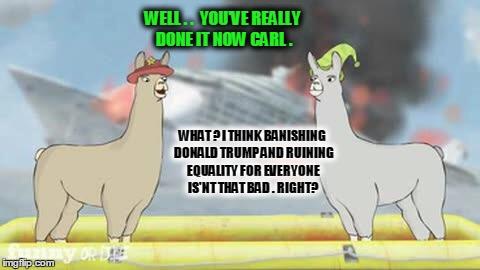 Llamas With Hats Meme Generator Imgflip