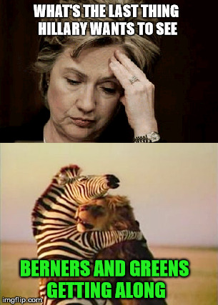 Last Thing... |  WHAT'S THE LAST THING HILLARY WANTS TO SEE; BERNERS AND GREENS GETTING ALONG | image tagged in berner,bernie sanders,hillary clinton,lion,zebra,green party | made w/ Imgflip meme maker