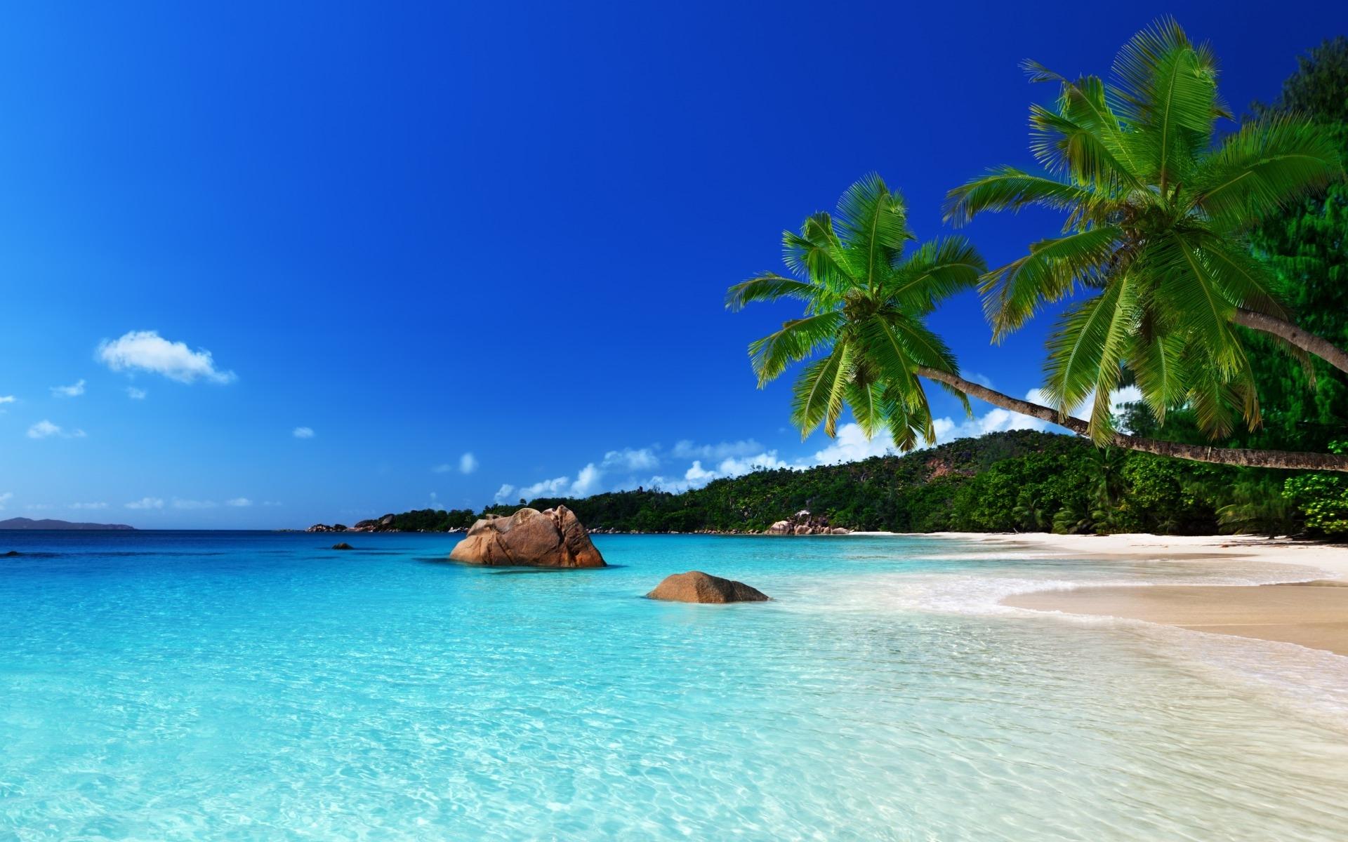 16k3fu tropical island birthday blank template imgflip