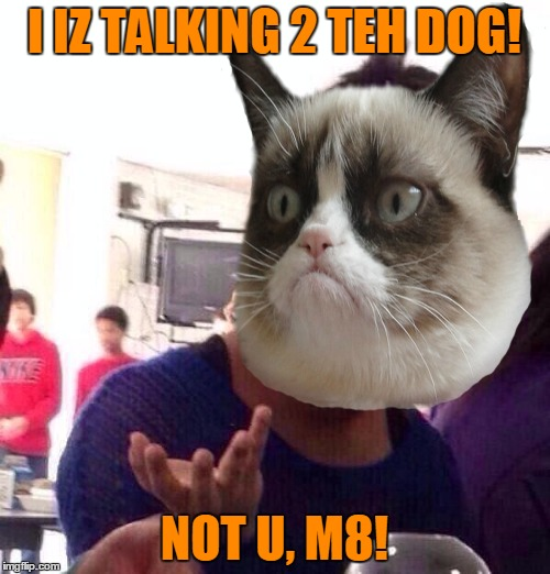 I IZ TALKING 2 TEH DOG! NOT U, M8! | made w/ Imgflip meme maker