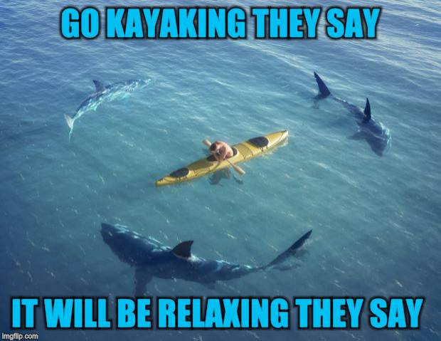 Shark week  | GO KAYAKING THEY SAY IT WILL BE RELAXING THEY SAY | image tagged in sharks,shark week,funny meme,kayak,it will be fun they said,funny | made w/ Imgflip meme maker