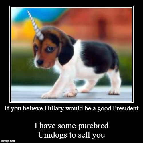 Unidogs for sale | If you believe Hillary would be a good President | I have some purebred Unidogs to sell you | image tagged in funny,demotivationals | made w/ Imgflip demotivational maker