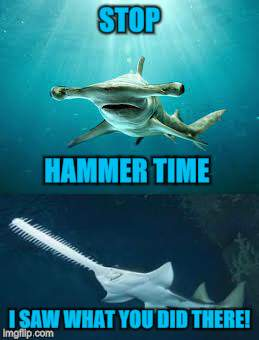 STOP I SAW WHAT YOU DID THERE! HAMMER TIME | made w/ Imgflip meme maker