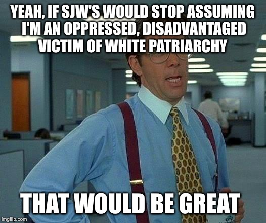 That Would Be Great Meme | YEAH, IF SJW'S WOULD STOP ASSUMING I'M AN OPPRESSED, DISADVANTAGED VICTIM OF WHITE PATRIARCHY THAT WOULD BE GREAT | image tagged in memes,that would be great,AdviceAnimals | made w/ Imgflip meme maker