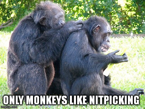 ONLY MONKEYS LIKE NITPICKING | made w/ Imgflip meme maker