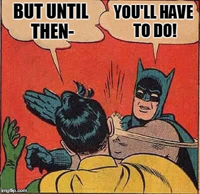 Batman Slapping Robin Meme | BUT UNTIL THEN- YOU'LL HAVE TO DO! | image tagged in memes,batman slapping robin | made w/ Imgflip meme maker