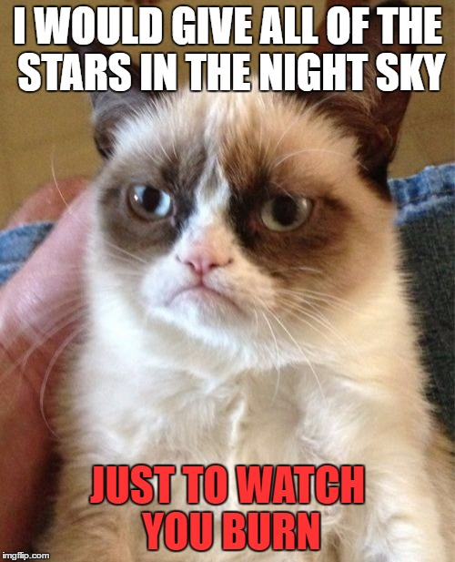Grumpy Cat Meme | I WOULD GIVE ALL OF THE STARS IN THE NIGHT SKY JUST TO WATCH YOU BURN | image tagged in memes,grumpy cat | made w/ Imgflip meme maker
