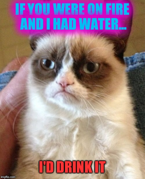 The heat always makes me thirsty. | IF YOU WERE ON FIRE AND I HAD WATER... I'D DRINK IT | image tagged in memes,grumpy cat,funny | made w/ Imgflip meme maker