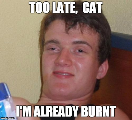 10 Guy Meme | TOO LATE,  CAT I'M ALREADY BURNT | image tagged in memes,10 guy | made w/ Imgflip meme maker