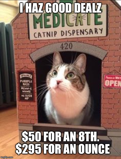 I HAZ GOOD DEALZ $50 FOR AN 8TH.  $295 FOR AN OUNCE | made w/ Imgflip meme maker