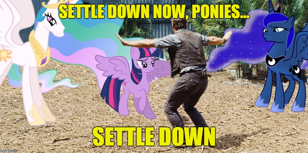 SETTLE DOWN NOW, PONIES... SETTLE DOWN | made w/ Imgflip meme maker