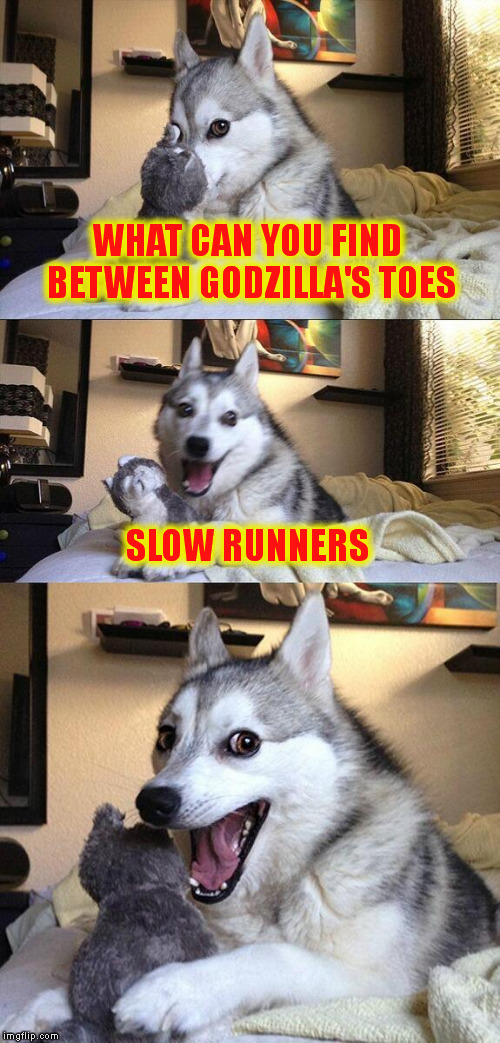 Bad Pun Dog Meme | WHAT CAN YOU FIND BETWEEN GODZILLA'S TOES SLOW RUNNERS | image tagged in memes,bad pun dog | made w/ Imgflip meme maker