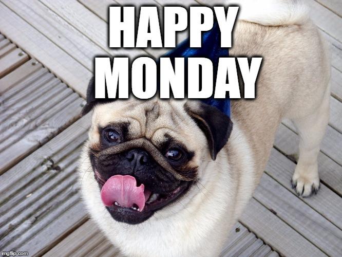 Funny Happy Monday Meme : Happy monday imgflip