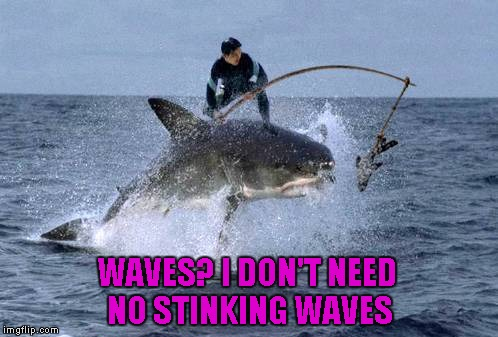 If the waves go away, don't let it ruin your day...you can still make your mark, ride a Great White shark. | WAVES? I DON'T NEED NO STINKING WAVES | image tagged in shark surfing,memes,shark,funny animals,funny,animals | made w/ Imgflip meme maker