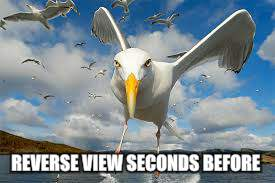 REVERSE VIEW SECONDS BEFORE | made w/ Imgflip meme maker