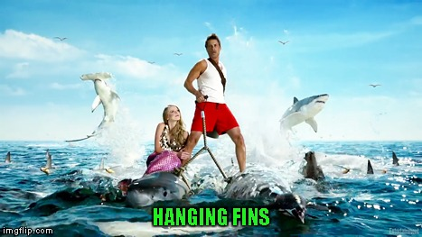 HANGING FINS | made w/ Imgflip meme maker