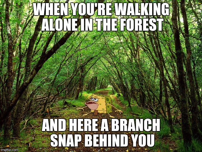 Spongegar In The Forest. :) | WHEN YOU'RE WALKING ALONE IN THE FOREST AND HERE A BRANCH SNAP BEHIND YOU | image tagged in spongegar forest,spongegar,memes | made w/ Imgflip meme maker
