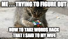 Cat Rubiks Cube | ME . . . TRYING TO FIGURE OUT HOW TO TAKE WORDS BACK THAT I SAID TO MY WIFE | image tagged in cat rubiks cube | made w/ Imgflip meme maker