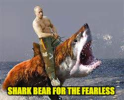 SHARK BEAR FOR THE FEARLESS | made w/ Imgflip meme maker