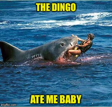 THE DINGO ATE ME BABY | made w/ Imgflip meme maker