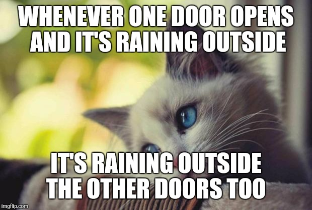 Model of the World | WHENEVER ONE DOOR OPENS AND IT'S RAINING OUTSIDE IT'S RAINING OUTSIDE THE OTHER DOORS TOO | image tagged in sad kitty | made w/ Imgflip meme maker