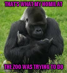 THAT'S WHAT MY HOMIE AT THE ZOO WAS TRYING TO DO | made w/ Imgflip meme maker