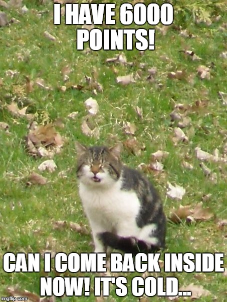 I HAVE 6000 POINTS! CAN I COME BACK INSIDE NOW! IT'S COLD... | image tagged in memes,funny,funny cat,cat,funny cat memes,popular | made w/ Imgflip meme maker
