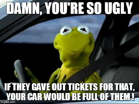 Kermit Car |  DAMN, YOU'RE SO UGLY; IF THEY GAVE OUT TICKETS FOR THAT, YOUR CAR WOULD BE FULL OF THEM ! | image tagged in kermit car | made w/ Imgflip meme maker
