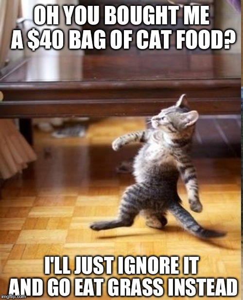 OH YOU BOUGHT ME A $40 BAG OF CAT FOOD? I'LL JUST IGNORE IT AND GO EAT GRASS INSTEAD | made w/ Imgflip meme maker