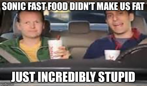 SONIC FAST FOOD DIDN'T MAKE US FAT JUST INCREDIBLY STUPID | made w/ Imgflip meme maker