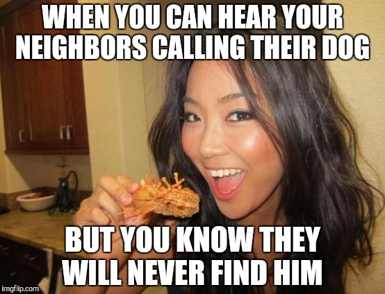 Just Asian's thing | WHEN YOU CAN HEAR YOUR NEIGHBORS CALLING THEIR DOG BUT YOU KNOW THEY WILL NEVER FIND HIM | image tagged in asian girl | made w/ Imgflip meme maker
